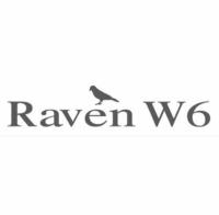 The Raven W6